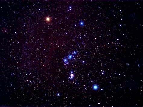Orion | ferrebeekeeper