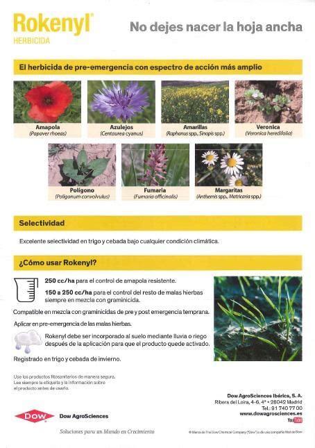 Os presentamos herbicidas pre emergencia para cereal ...