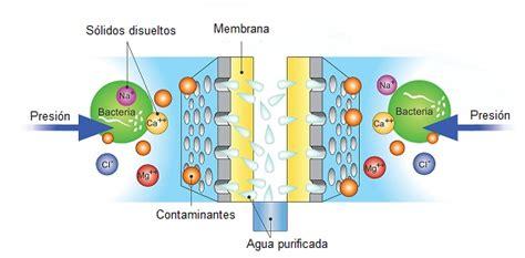 Ósmosis Inversa – Un proceso sofisticado de filtración por ...