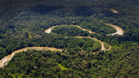 Otra vez, todos a limpiar la selva   Red Eclesial Panamazónica