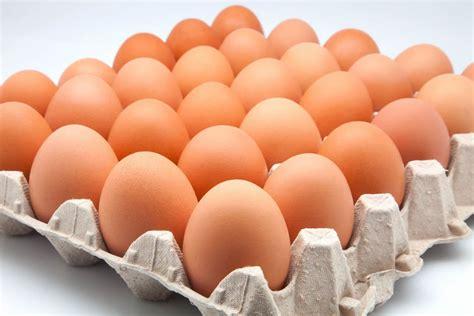 Otro aumento: A cuánto se fue la docena de huevos   Canal ...