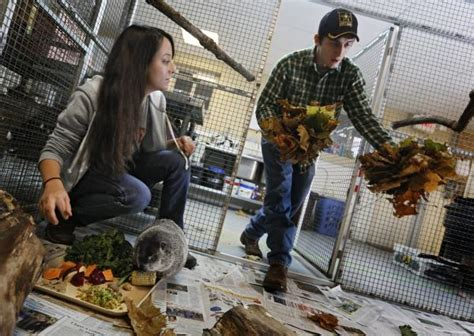 Otterbein offers zookeeper degree   News   The Columbus ...