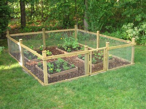 Our cute garden!! | Fenced vegetable garden, Vegetable ...