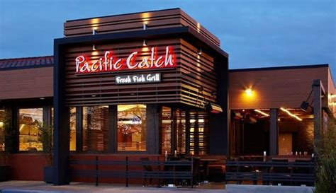 Pacific Catch, Campbell   Menu, Prices & Restaurant ...