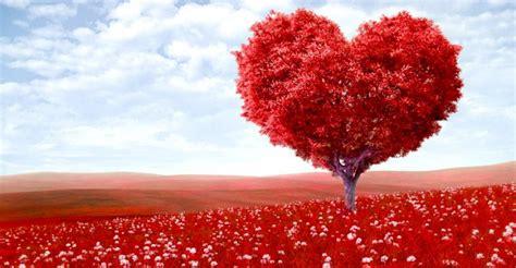 Paisajes de amor eterno | imagenes hermosas fotos enamorados