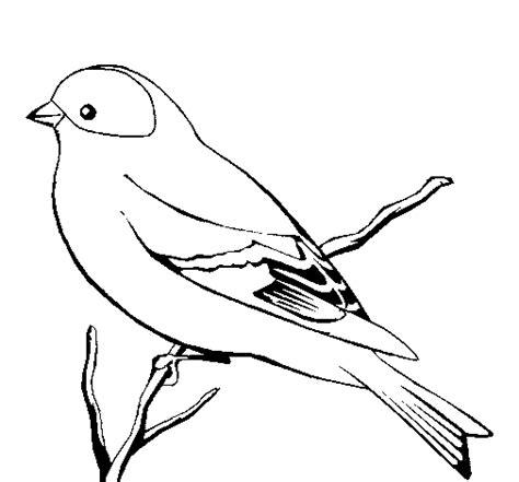 pajaro para pintar | Dibujos de pájaro, Dibujos de aves ...