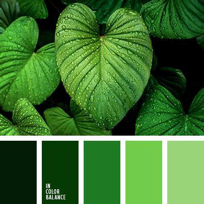 paleta del color verde monocromática | IN COLOR BALANCE