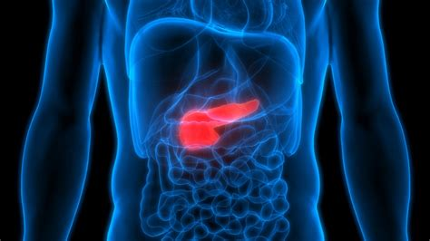 Pancreatic cancer treatment: Polo trial for Maintenance ...