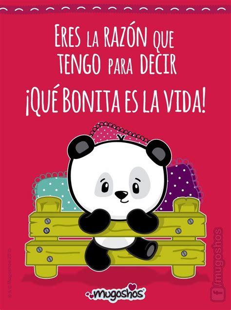Panditas | Pandas | Frases de amor, Amor y Mugoshos