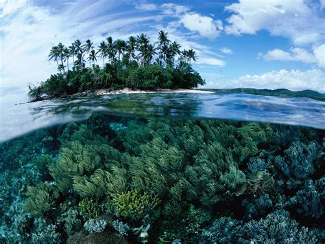 Papua New Guinea   Travel Devotion