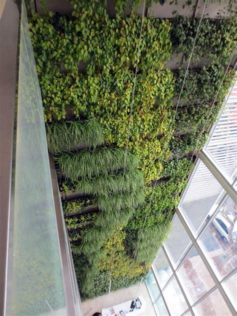 Para construir paredes vegetales y terrazas verdes