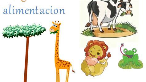 PARA NIÑOS ... CLASIFICACION DE LOS ANIMALES SEGUN SU ...