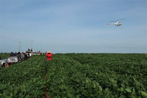 Paraguay tendría soja resistente a la sequía en el 2020 ...