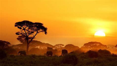 Paraísos cercanos   Kenia, la cima africana   RTVE.es