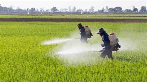 Paraquat Lawsuit   The Pesticide Linked to Parkinson s Disease