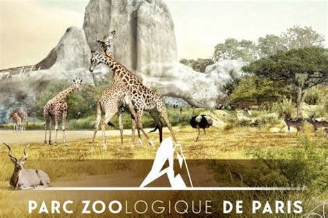 Parc Zoologique de Paris   Zoo de Vincennes : horaires et ...