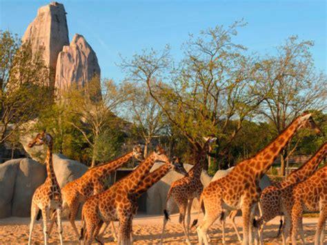 Parc zoologique de Paris   Zoo de Vincennes   Parcs de ...