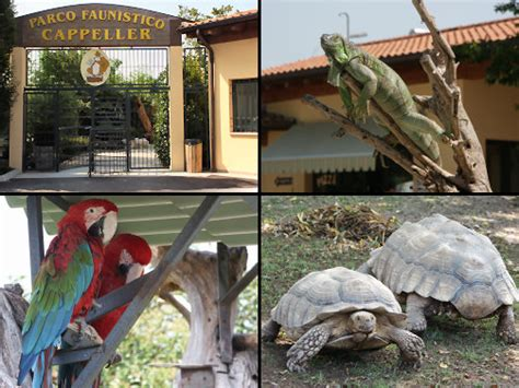 Parco faunistico Cappeller in Cartigliano Italy   Family ...