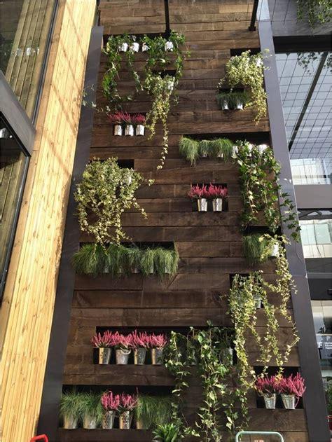 Pared vegetal de la parte trasera de la terraza | Plant ...