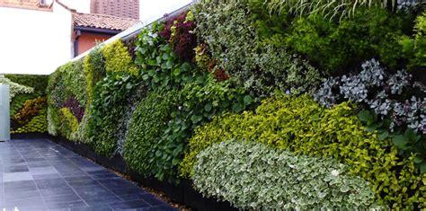 Pared vegetal | Panel de jardin vertical