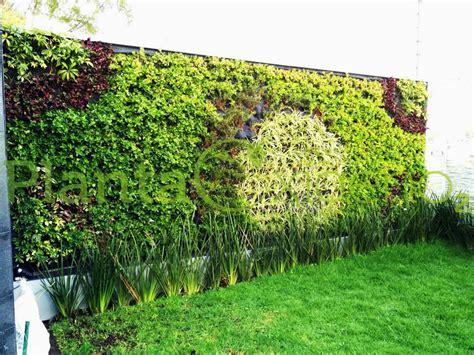 Pared Verde Residencial   Muros Azoteas verdes y diseño ...