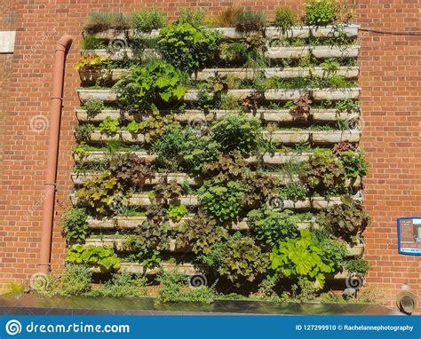 Paredes verdes imagen editorial. Imagen de verde, yourself ...