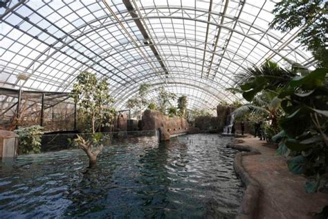 Paris zoo reopens with a new look   Stuff.co.nz