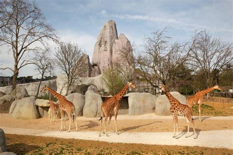 Paris Zoological Park  Zoo de Vincennes  | Official ...