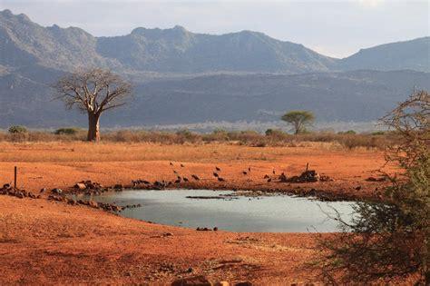 Parks und Camps .:Safari in Kenia:. Nationalparks und ...