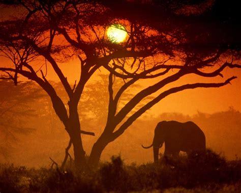 Parque Nacional de Amboseli, Kenia | PAISAJES,PUESTAS DEL ...