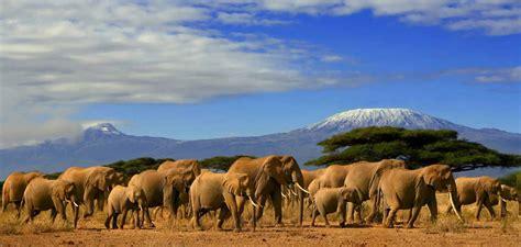 Parque Nacional de Amboseli: Una belleza singular   Blog ...
