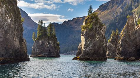 Parque Nacional de los fiordos de Kenai Tours   GetYourGuide