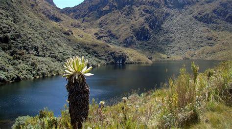 Parque Nacional Natural Las Hermosas   Gloria Valencia de ...
