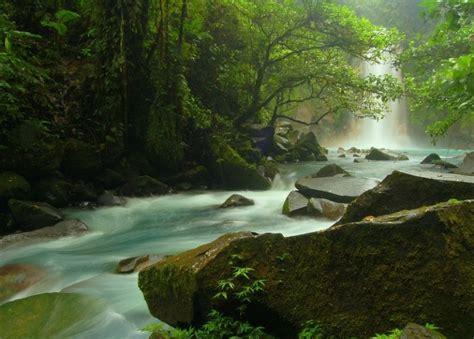 Parque Nacional Volcán Tenorio en Costa Rica | Coyotitos