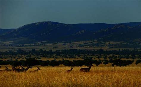 Parque Natural de Cabañeros, el pulmón de La Mancha   La ...