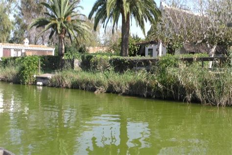 Parque natural el Palmar Valencia.   La Albufera ...