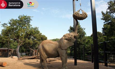 Parques de animales para grandes y pequeños en España | El ...