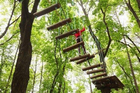 Parques de aventura para niños y familias en España