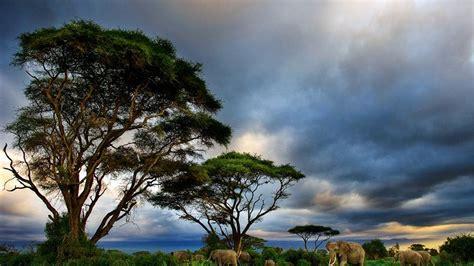 Parques míticos de Kenia