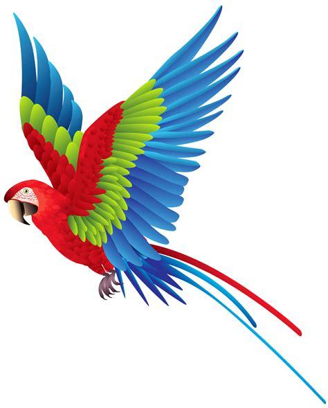 Parrot clipart bird fly, Parrot bird fly Transparent FREE ...