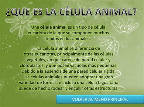 Partes De La Celula Animal Con Su Definicion   Consejos ...