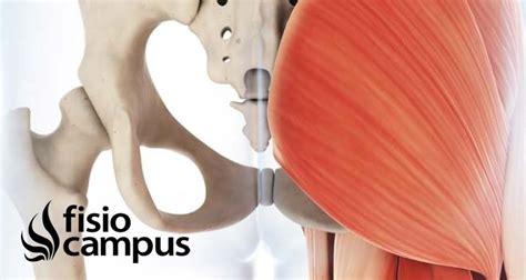 Participación del glúteo medio en el dolor lumbar crónico ...