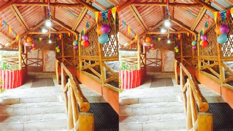 Party Farm   Celebra el cumpleaños de tus hijos en estos ...
