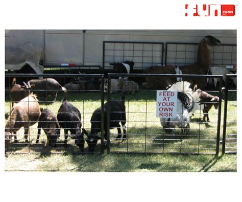 Party Rentals :: EVENT SERVICES & SUPPLIES :: Petting Zoo ...