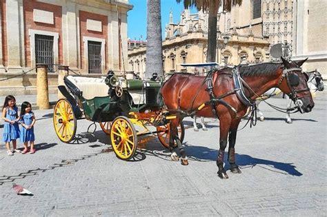 Paseo en Coche de Caballos por Sevilla. Reservar. Mejor ...