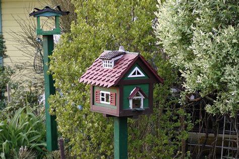 Paso a paso para poner una casa para pájaros en el jardín