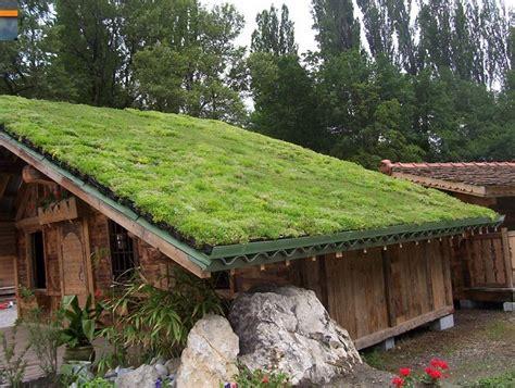 Pasos para construir un pequeño techo verde
