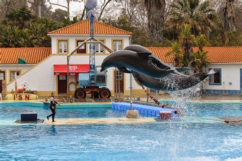 Passeio pelo Jardim Zoológico de Lisboa   A Miúda dos ...