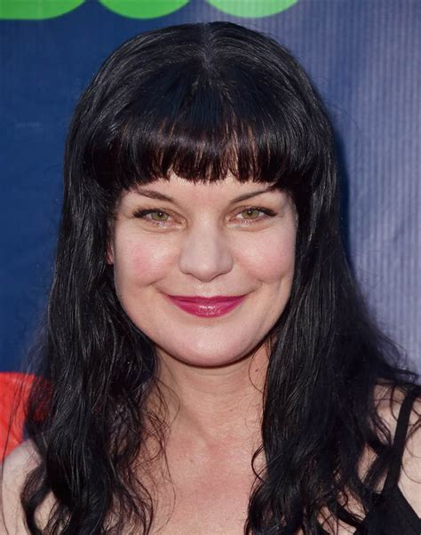 Pauley Perrette,  NCIS  Actress, Attacked by  Psychotic ...