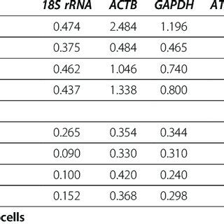 PDF  18S rRNA is a reliable normalisation gene for real ...